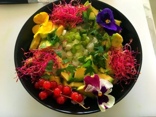 Assiette vegan et florale par le chef Anthony KHALIFA